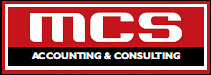 AGENCY MCS Consulting, auditing Belgrade