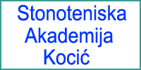 TABLE TENNIS ACADEMY KOCIC