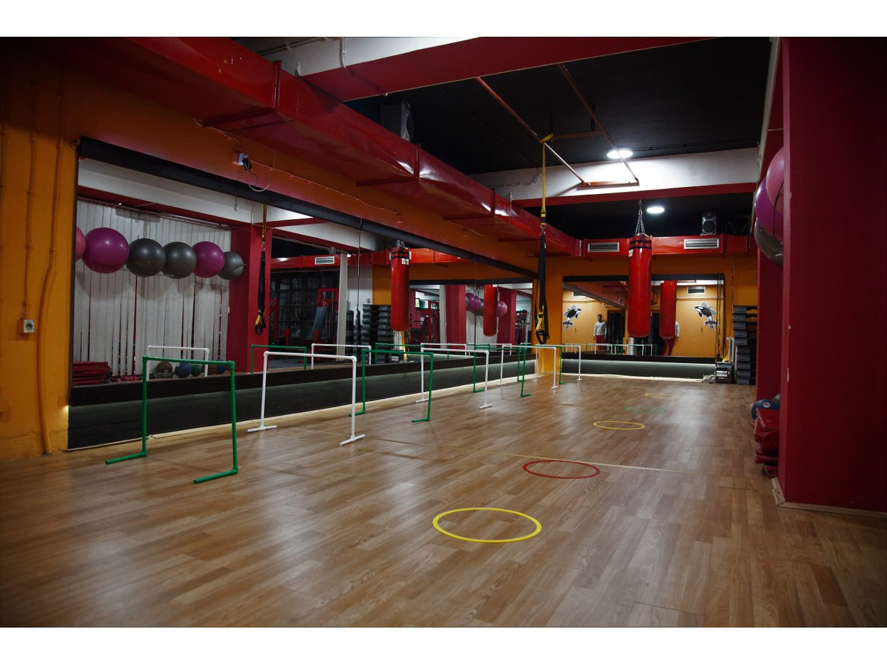 ORCA GYM Gyms, fitness Beograd