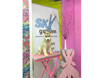 SKY GROOM Pet salon, dog grooming Beograd