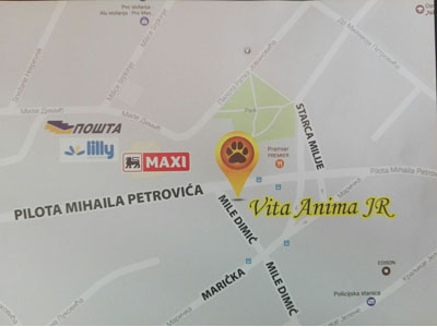 VITA ANIMA Veterinarske ordinacije, veterinari Beograd