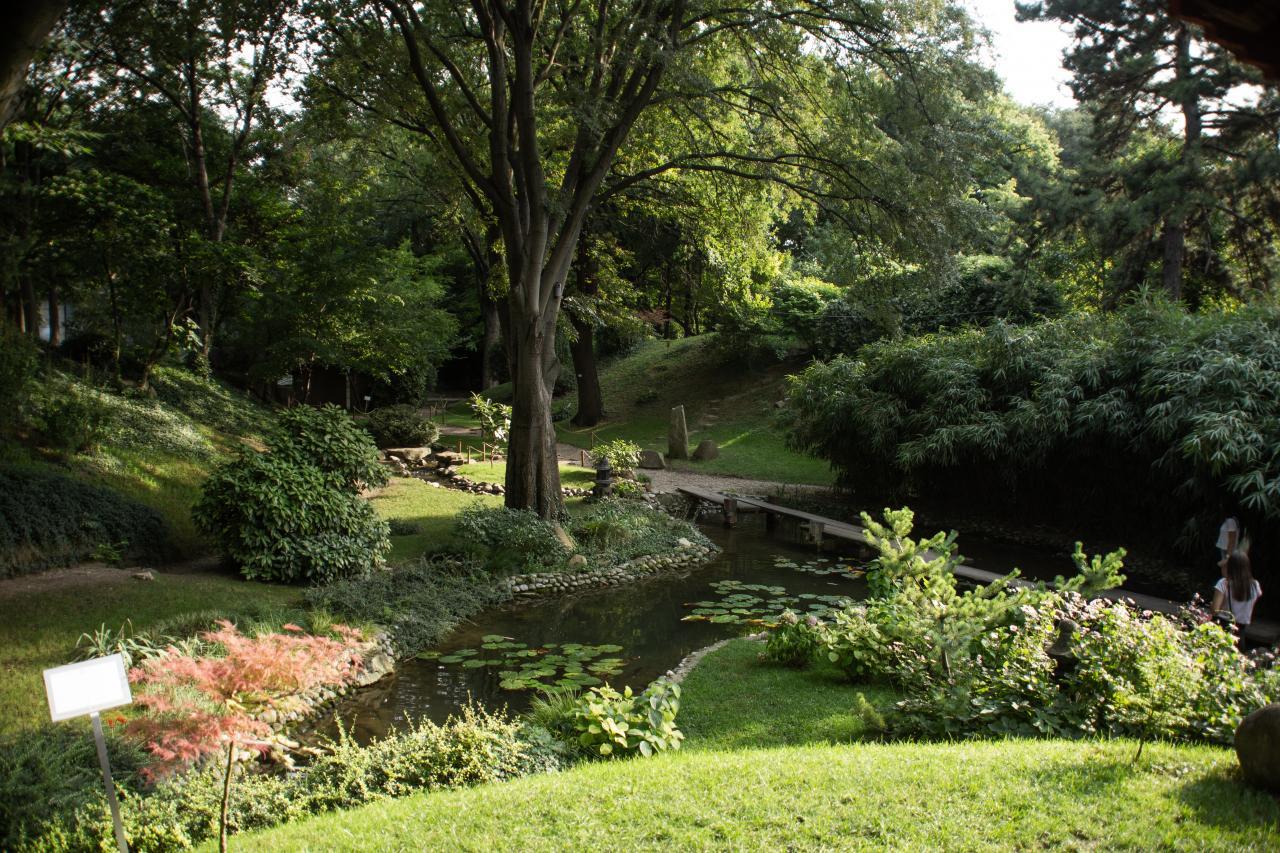 Botanička bašta Jevremovac, zaboravljeni raj u centru Beograda 31