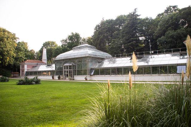 Botanička bašta Jevremovac, zaboravljeni raj u centru Beograda Botanicka-basta-Foto-Milena-Arsic-241