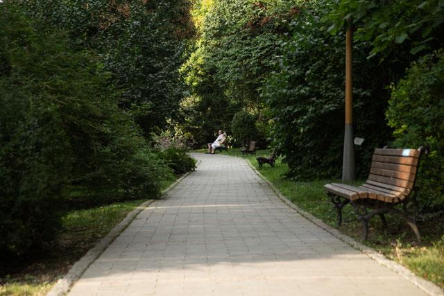 Botanička bašta Jevremovac, zaboravljeni raj u centru Beograda Botanicka-basta-Foto-Milena-Arsic-27
