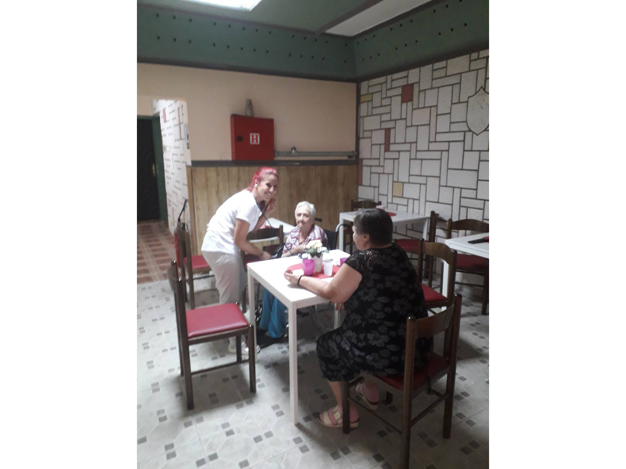 PADINA - HOME FOR OLD PEOPLE Homes and care for the elderly Beograd
