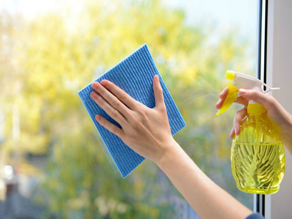 AGENCY FOR CLEANING PEDANT Hygiene Beograd