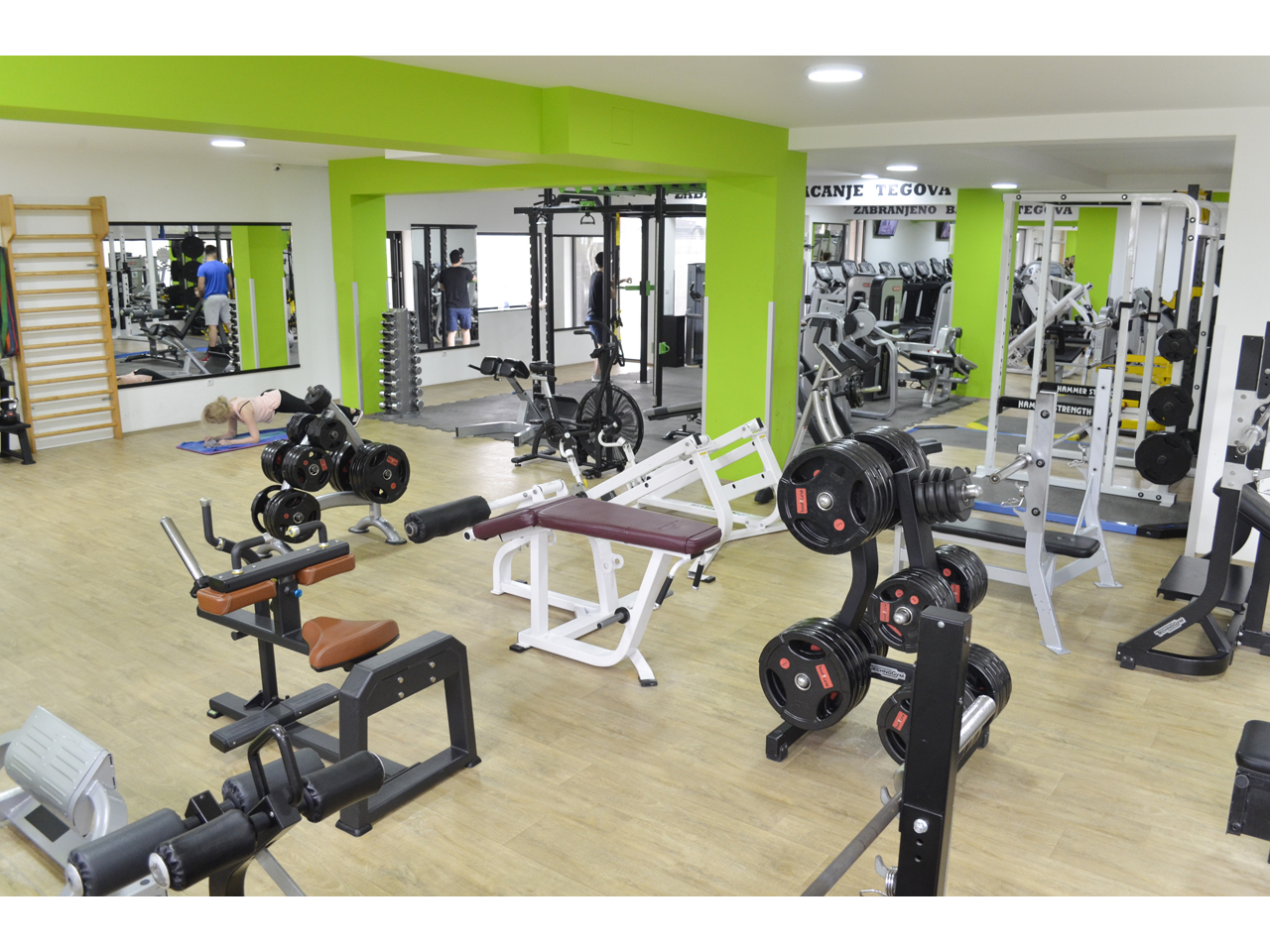 MUSCLE FACTORY Gyms, fitness Beograd