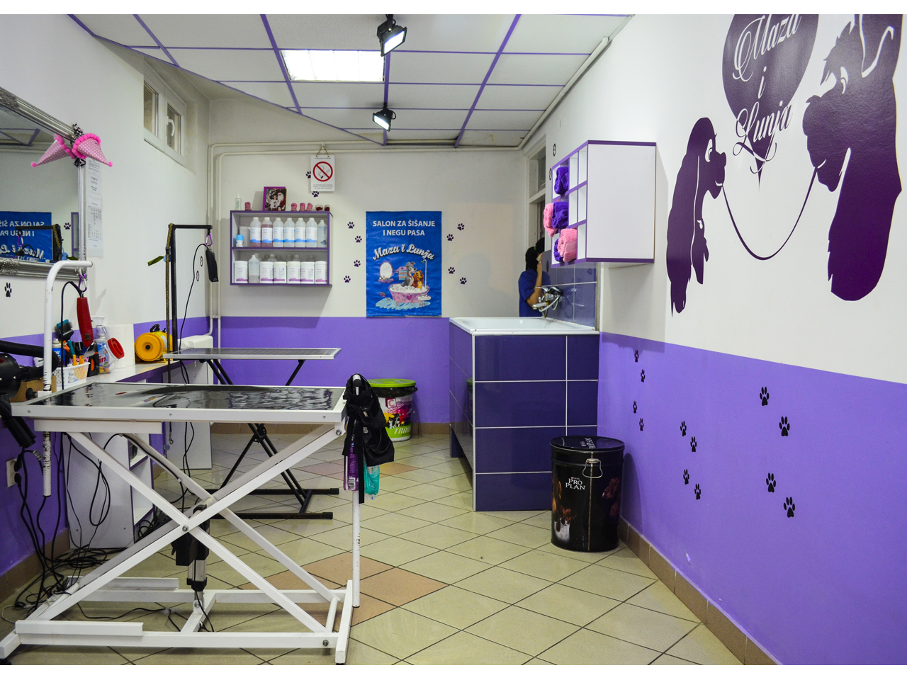 DOG SALON MAZA I  LUNJA Pet salon, dog grooming Beograd