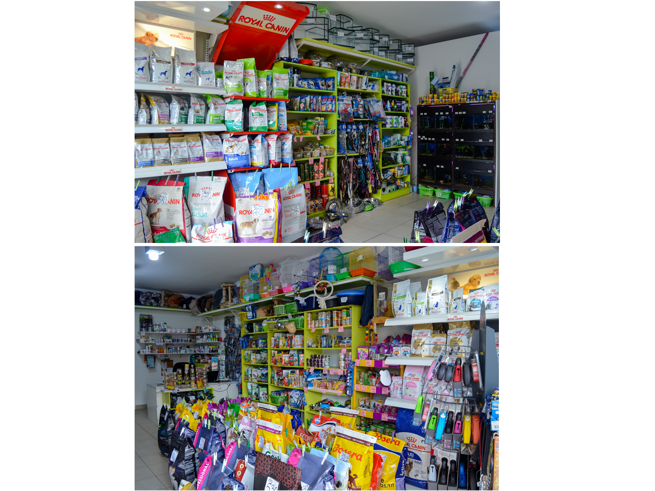 PET SHOP & VET PHARMACY DJINA Pets, pet shop Beograd