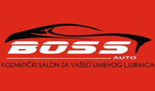 CAR PARTS AND EQUIPMENT BOSS AUTO PLUS