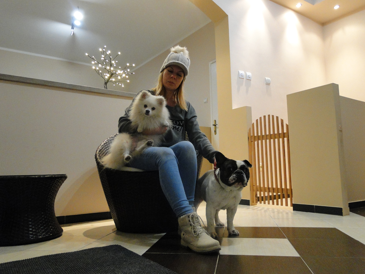 BRUMMENLAND HOTEL FOR DOGS Dog kennel, boarding for dogs Beograd