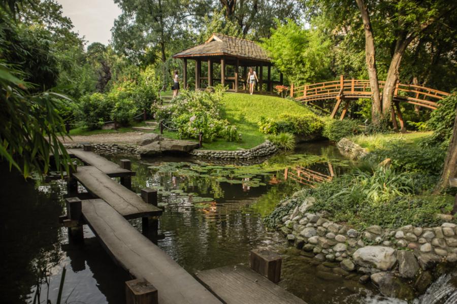 Botanička bašta Jevremovac, zaboravljeni raj u centru Beograda 900x600_Botanicka%20basta%20Foto%20Milena%20Arsic%207